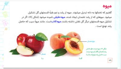 یازدهم - پاورپوینت فصل هشتم زیست شناسی یازدهم