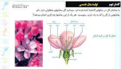 پاورپوینت فصل هشتم زیست شناسی یازدهم