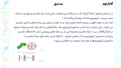 فصل-6-زیست-11