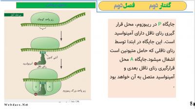 فصل دوم گفتار دوم - پاورپوینت زیست شناسی دوازدهم - فصل دوم